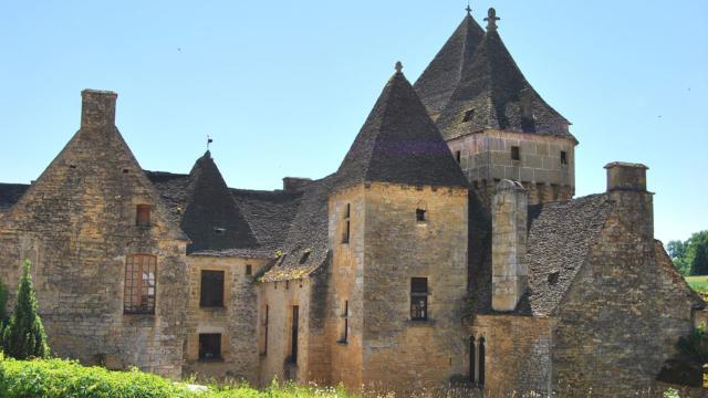 Chateau De Saint Genies