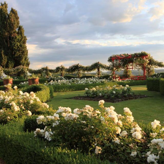 Le Jardin Blanc d'Eyrignac