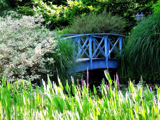 Le Pont Monet