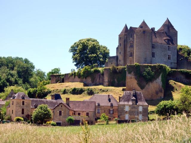 Château de Salignac